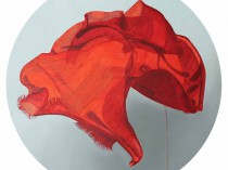 The Great Red Shawl, 2016